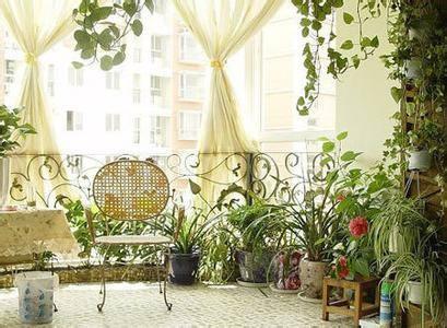 露台绿化设计